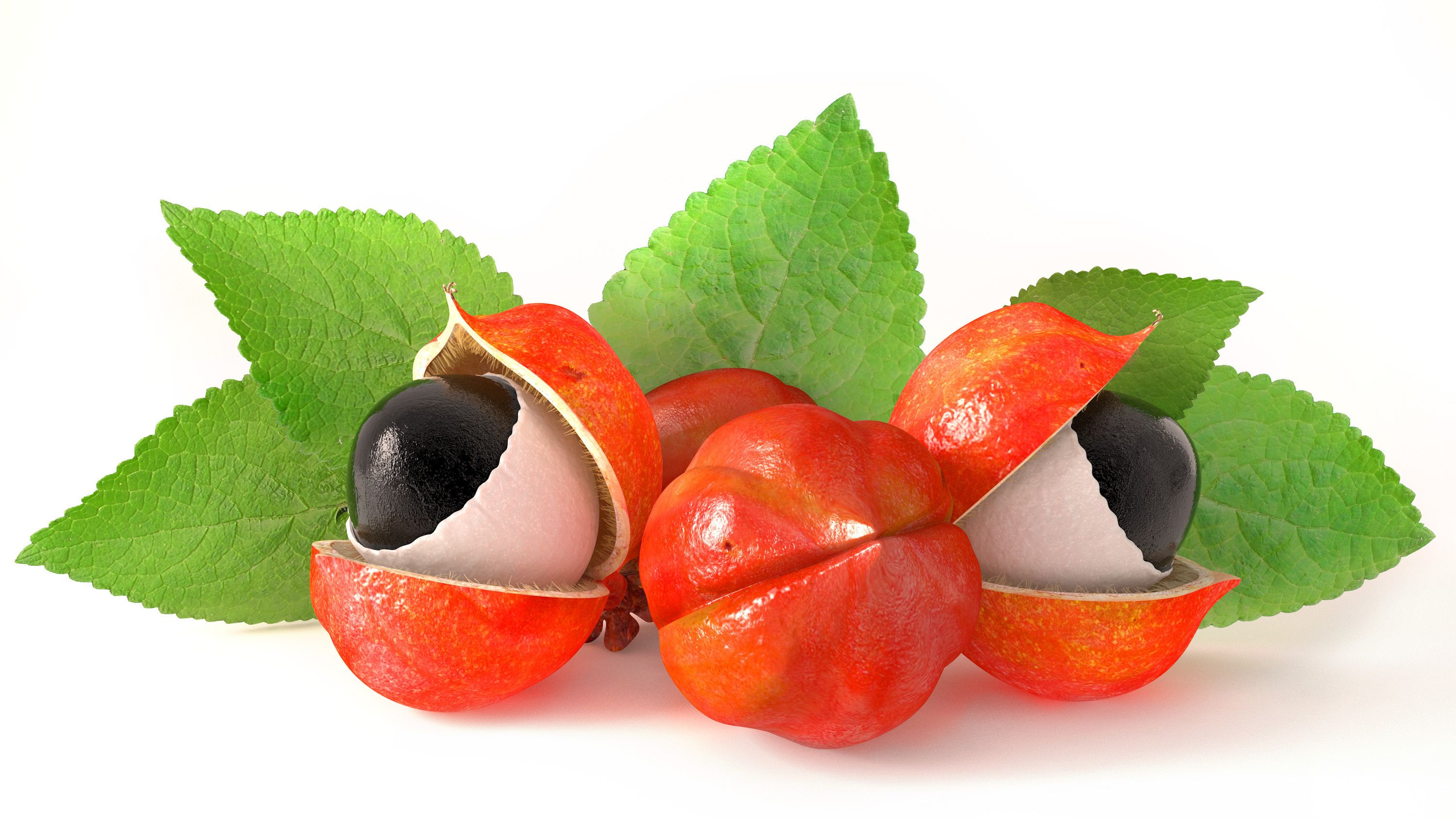 Taste Nature Guarana Fruit